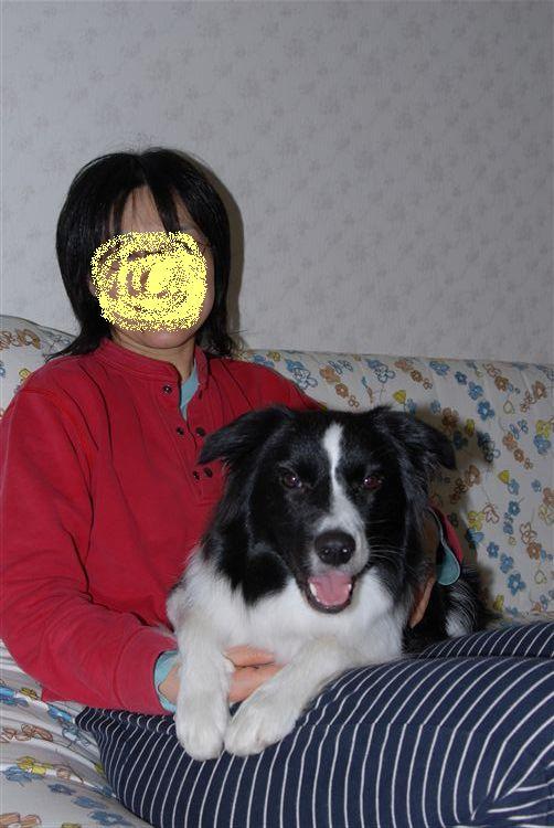 Dsc_0856_rkakou