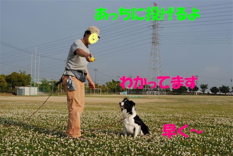 Dsc_0098_r1_2