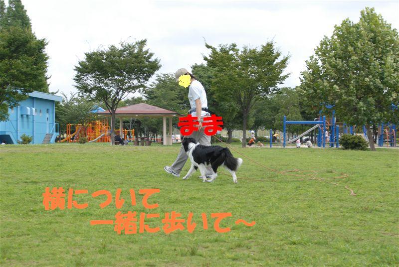 Dsc_0067_r1