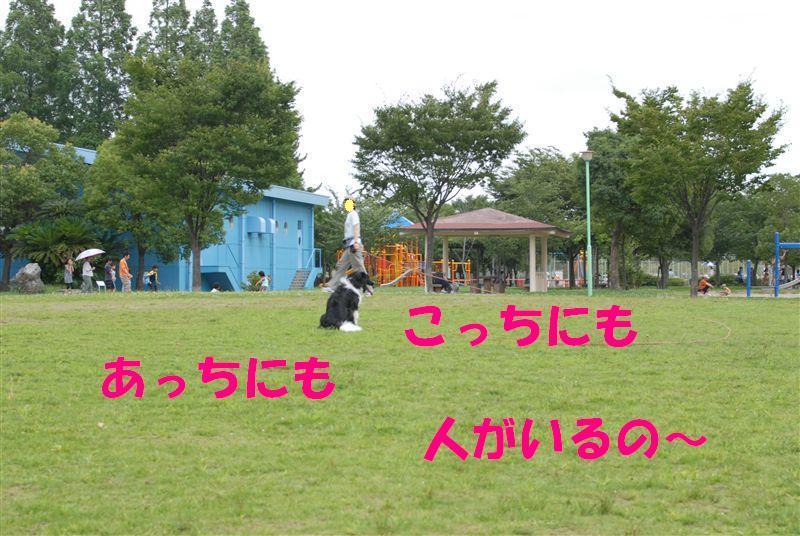 Dsc_0068_r1