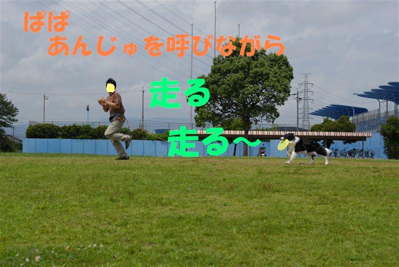 Dsc_0199_r1