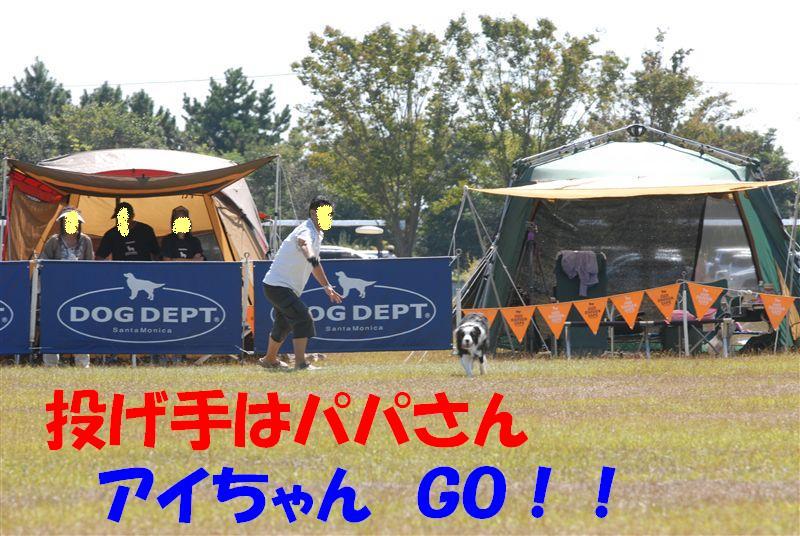 Dsc_0599_r1