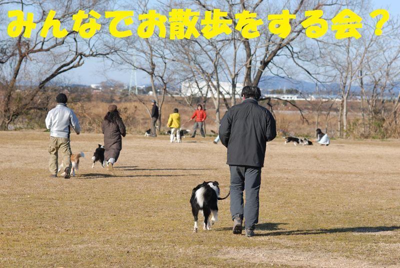 Dsc_0917_1_r1_2