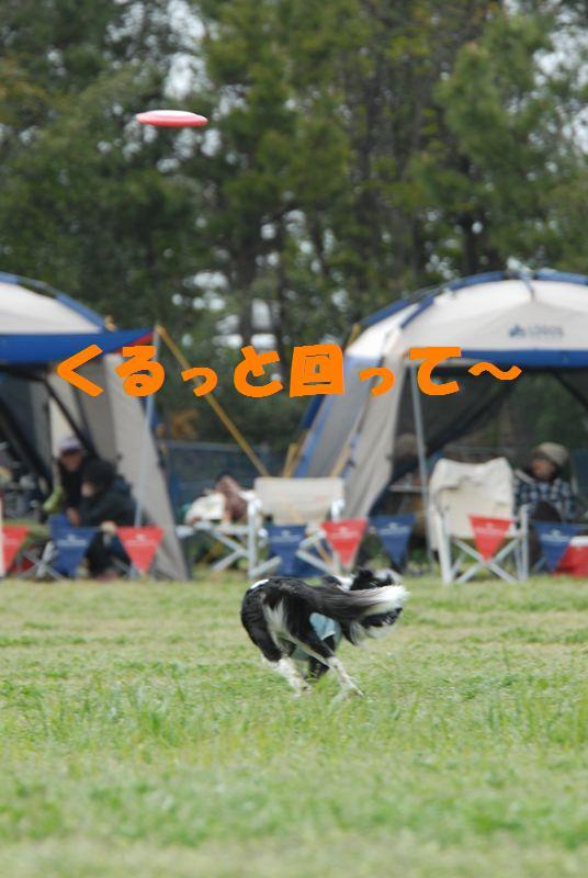 Dsc_2898_r